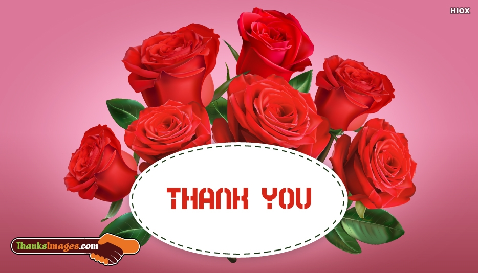 Rose To Say Thank You