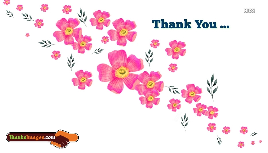Thank You Flower Pic