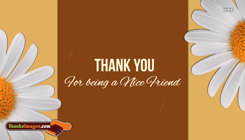 Thank You For Being Nice Friend