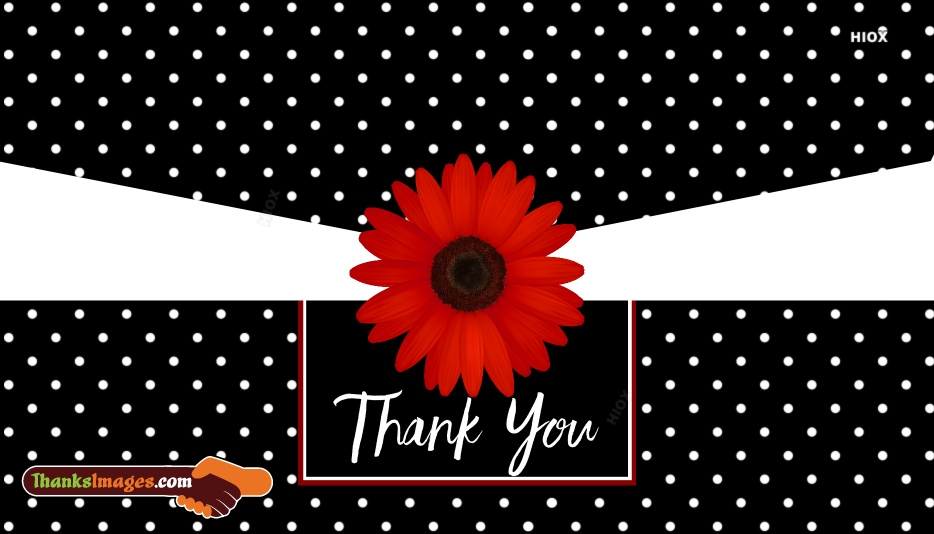 Thank You Flowers Images