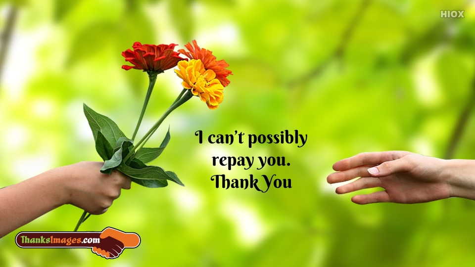 Thank You Quotes For Him