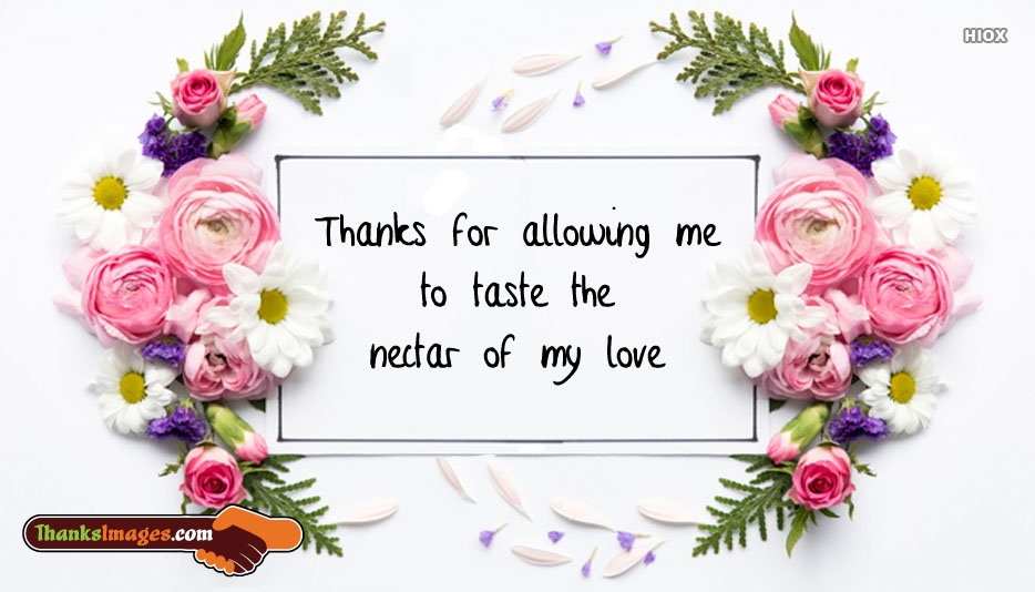 Thanks For Allowing Me To Taste The Nectar Of My Love