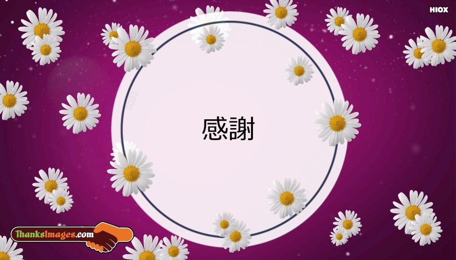 Thanks In Japanese | 感謝