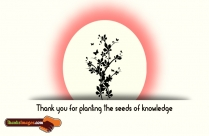 Thank You For Planting The Seeds Of Knowledge