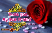 Thank You My New Friend