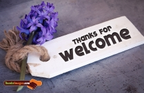 Thanks For Welcome