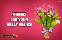 Thanks For Your Great Wishes